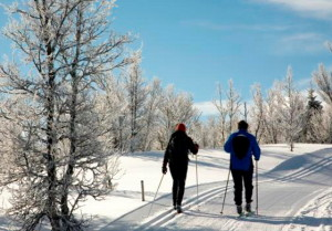 Cross Country Ski © Norske Bygdeopplevelser AS, 2014