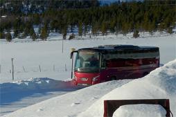 info_bus
