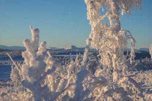 noosl054-schneeschuh-norwegen-winterlandschaft