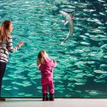 Begegnung mit Meeresbewohnern © Per Eide
