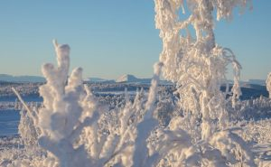csm_noosl053-schneeschuh-norwegen-winterlandschaft_1a132533a0